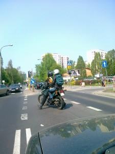 Pies na motocyklu